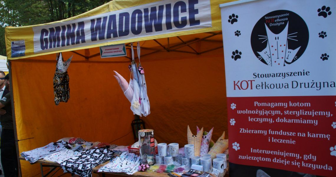 IV Pikniku Organizacji Pozarządowych w Wadowicach